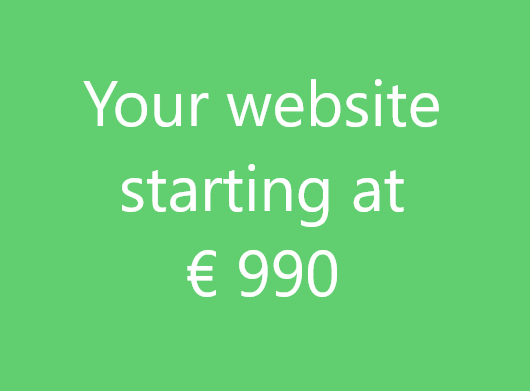 Website starting at 990 euros